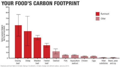 foods carbon footprint