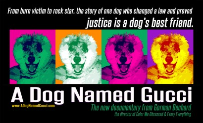 A-Dog-Named-Gucci-BANNER-1-1024x624