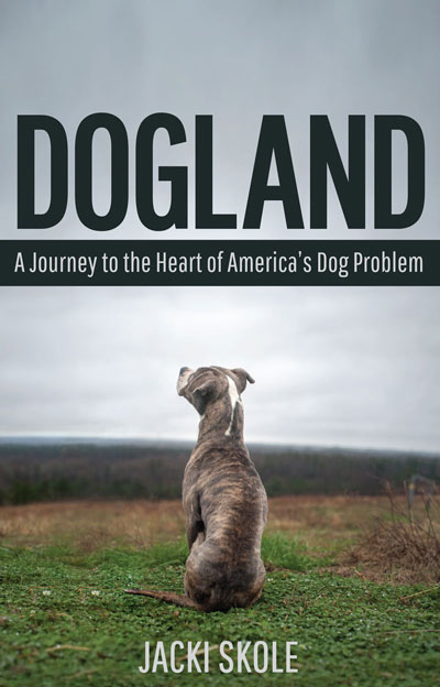 Reading Series: Dogland – Meeting Miss Daisy [#readathon post]