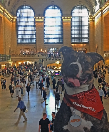 FindYourFido_NYCLandmarks_Sept2017_0008