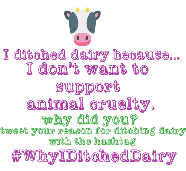 dairy free 2